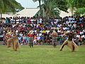Fiji dancers (7755032368) (2).jpg