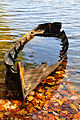 File 054, Alter Kahn im Herbstlaub.jpg