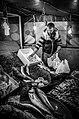 Fish Market (56867140).jpeg