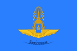 Flag Show units that are part of the battle (RTAF).png