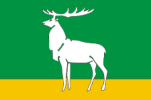 Buzuluk, Orenburg Oblast - Image: Flag of Buzuluk (Orenburg oblast)