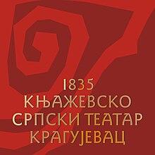 Flag of Knjaževsko-srpski teatar.jpg