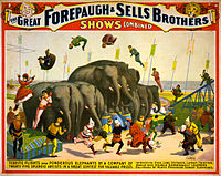 Flickr - ...trialsanderrors - Terrific flights over ponderous elephants, poster for Forepaugh ^ Sells Brothers, ca. 1899.jpg