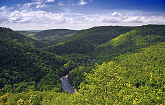 Pennsylvania - World's End State Park, Sullivan County