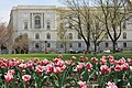 Flickr - USCapitol - Russell Senate Office Building in Spring.jpg