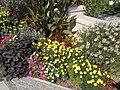 Flower beds. - Tagore Promenade, Balatonfüred.JPG