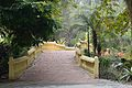 Footbridge - Agri-Horticultural Society of India - Alipore - Kolkata 2013-01-05 2236.JPG