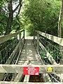 Footbridge over Darwell Stream - geograph.org.uk - 1285688.jpg