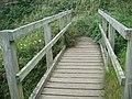 Footbridge over the Pendour Cove stream - geograph.org.uk - 1459413.jpg