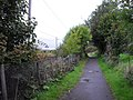 Footpath at Milton - geograph.org.uk - 1581828.jpg