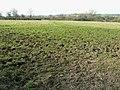 Footpath near Waldron's Farm, Brinkworth - geograph.org.uk - 1209552.jpg