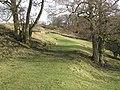 Footpath to Holms Linn (3) - geograph.org.uk - 1802762.jpg
