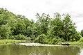 Forest Park, Springfield, MA 01108, USA - panoramio (17).jpg