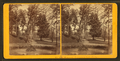 Fountain, Fairmount Park, Philadelphia, from Robert N. Dennis collection of stereoscopic views 3.png