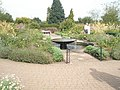 Fountain at the Royal Horticultural Society's Gardens,Wisley - geograph.org.uk - 943026.jpg
