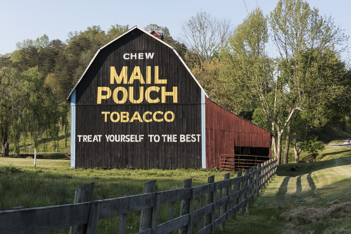 Freshly painted (or repainted) Mail Pouch Tobacco sign on a barn in rural Jackson County, West Virginia LCCN2015631965.tif