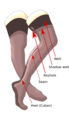 Fully fashioned stockings.png