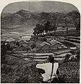 Gebrüder Underwood - Reisfelder und Teesträucher, Südchina (Zeno Fotografie).jpg