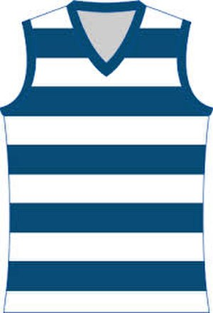 Goulburn Valley Football League - Image: Geelong Cats Jumper