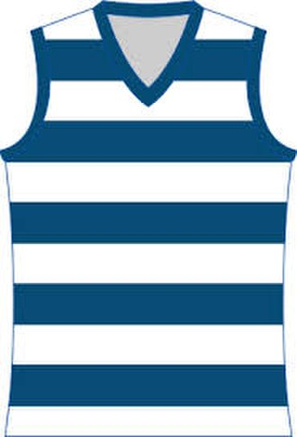 Colac & District Football League - Image: Geelong Cats Jumper