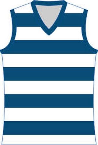 Goulburn Valley Football League - Image: Geelong Cats Jumper