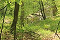 Gfp-indiana-dunes-national-lakeshore-stream.jpg