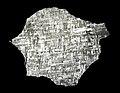 Gibeon meteorite slice.jpg