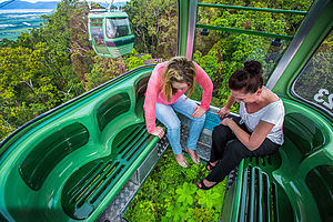 Skyrail Rainforest Cableway - View from Diamond View glass floor gondola