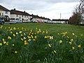 Gortrush Park, Omagh - geograph.org.uk - 1254542.jpg