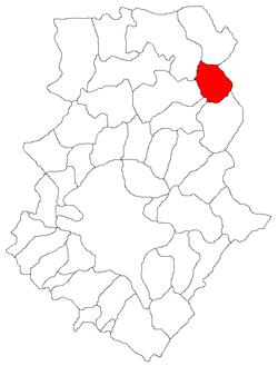 Vị trí của Gradistea