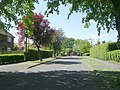Grange Road - Grange Avenue - geograph.org.uk - 1299049.jpg