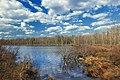 Grass Lake (Revisited) (5) (17176492179).jpg