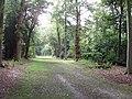 Green Drive, Cliveden Estate - geograph.org.uk - 60065.jpg