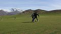 Green Places in Chitral.jpg