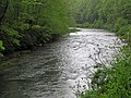 Greenbrier River (downstream from Durbin, West Virginia, USA) 2 (27169924954).jpg