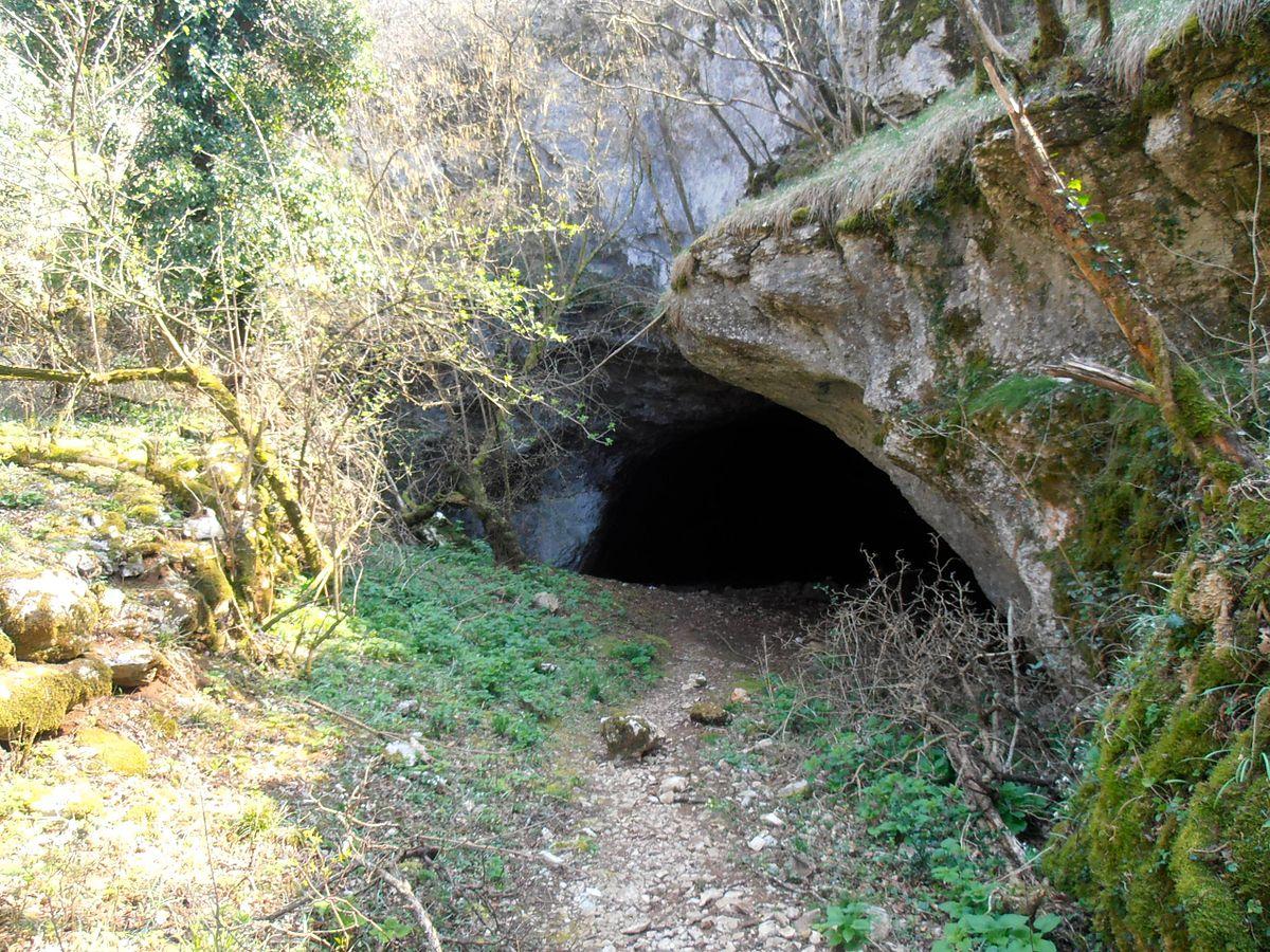 Grotta Dell Orso Trieste Wikipedia