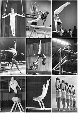 No sentido horário: argolas, cavalo com alças, barra fixa, solo, trave, barras assimétricas, salto, barras paralelas. No canto inferior à direita: a GR como integrante da modalidade artística feminina.