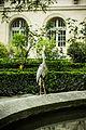 Héron sur la fontaine aux Ernests de l'Ecole Normale Supérieure de Paris.jpg