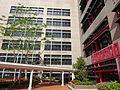 HKU Chong Yuet Ming Chemistry Physics tree Building facade Jan-2016 DSC.JPG