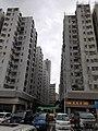 HK Kln 九龍城區 Kowloon City District 土瓜灣道 To Kwa Wan Road 新碼頭街 San Ma Tau Street 巴士總站 Bus Terminus 停車場 carpark June 2020 SS2 33.jpg