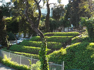Hayes Valley, San Francisco - Image: Hayes Valley Farm by Zoey Kroll fava hillside