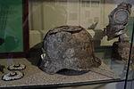 Helmet (5402158182).jpg