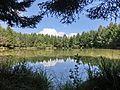 Herrnweiher 1 - panoramio.jpg