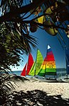 Hobie Cat sailboats on Smathers Beach Key West, Florida.jpg