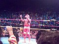 Hogan playing the crowd 2.jpg