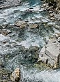 Hollyford River NZ 07.jpg