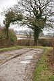 Holt Lane as track - geograph.org.uk - 642149.jpg