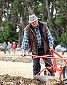 Horse Ploughing (13) (8069909578).jpg