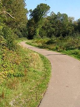 Horseshoe Path, Southampton Common - geograph.org.uk - 983036