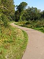 Horseshoe Path, Southampton Common - geograph.org.uk - 983036.jpg